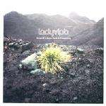 Ladyvipb - Stories Of A Broken Heart And Recovering - DISC 1 ONLY - Nuphonic - Experimental