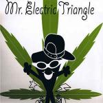 Mr. Electric Triangle - Is The 'erb Dope - 2 Kool - Trip Hop
