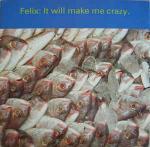 FELIX - It Will Make Me Crazy - Maxi 45T