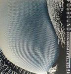 BOOM BOOM SATELLITES - Fogbound - Maxi 45T