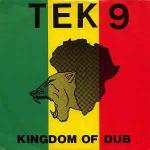 TEK 9 - Kingdom Of Dub - Maxi 45T