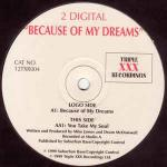 2 DIGITAL - Because Of My Dreams - 12 inch 45 rpm