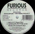Vocation Equilibrium - The Remix Project